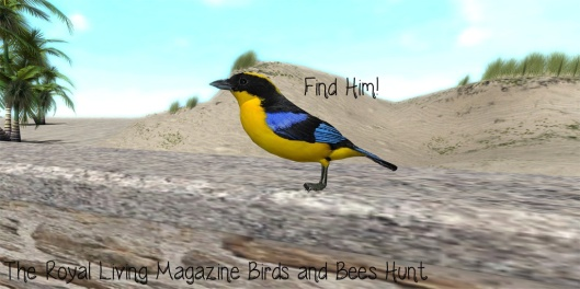 RLM Birds and Bees Hunt Object - Find the Birdie